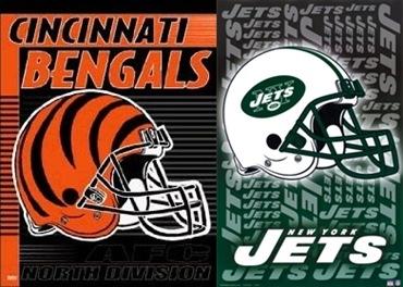 Stupid Cincinnati Bengals